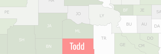 Todd County Map